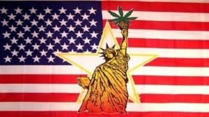 USA-hemp-growmart