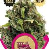 candy-kush-express-fast-version-growmart