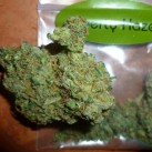 Barneys-Farm-Liberty-Haze-growshop-growmart