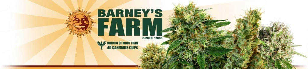 Barneys-Farm-growmart