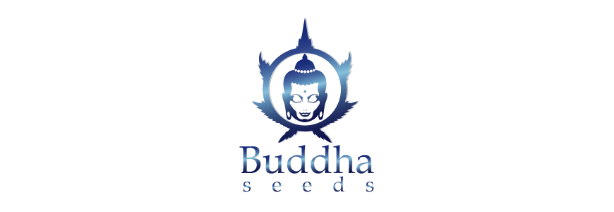 buddha-seeds-growshop-growmart