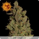 growmart-cbd-critical-cure