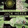 jack-herer-vision-seeds-description