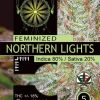northern-lights-vision-seeds-descriptions