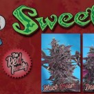 the-red-family-growshop-growmart