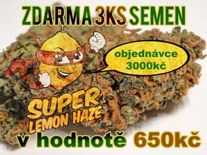 ZDARMA Super Lemon Haze 3ks semena konopí Growmart